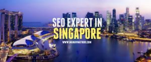 seo expert singapore